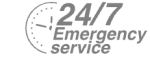 24/7 Emergency Service Pest Control in Harrow, Harrow on the Hill, HA1. Call Now! 020 8166 9746