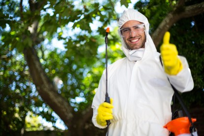Pest Control in Harrow, Harrow on the Hill, HA1. Call Now 020 8166 9746